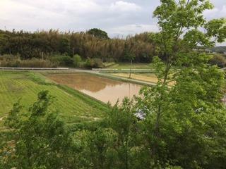 小松帯刀墓所 風景.jpg